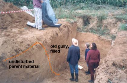 Excavating the Kinderveld gully, central Belgium